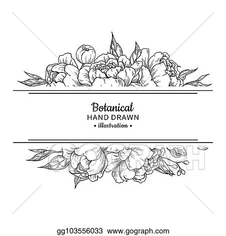 Vector Clipart Flower Vintage Border Vector Peony And Roses