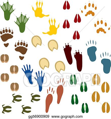 animal tracks clip art royalty free gograph rh gograph com Animal Cliparat Different Animal Paw Prints