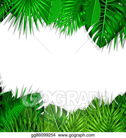 Vector Art Frame Tropical Leaves Summer Background Eps Clipart Gg86099254 Gograph Vector tropical jungle frame with gold palm trees and leaves on white background. https www gograph com clipart license summary gg86099254