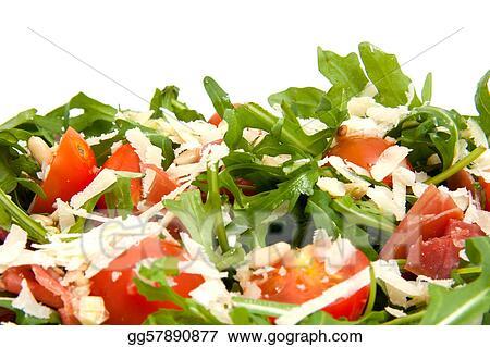 Stock Photography Fresh Rucola Lettuce Stock Photo