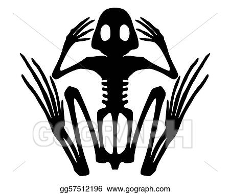 vector illustration frog skeleton stock clip art gg57512196 gograph rh gograph com Frog Silhouette Turtle Vector