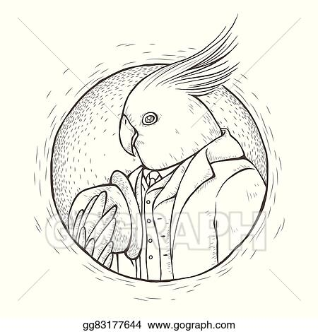 Clip Art Vector Gentleman Parrot Coloring Page Stock Eps