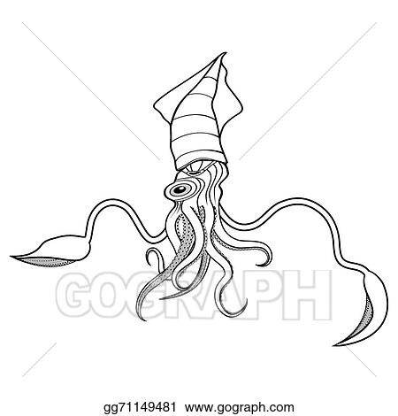 Vector Art   Squid Ocean Water Animal Sketch Tattoo Symbol Illustration  T Shirt Vector Icon. Diving Design. Clipart Drawing Gg71149481