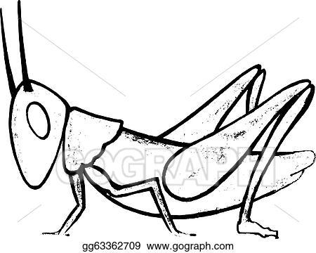create outline in grasshopper