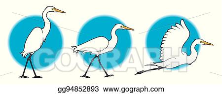 Vector Art Great Egret Clipart Drawing Gg94852893 Gograph