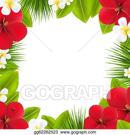 Hawaiian Border