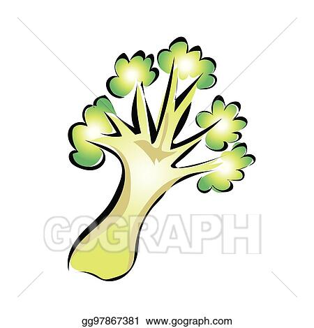 vector art green broccoli vector illustration isolated on white eps clipart gg97867381 gograph gograph