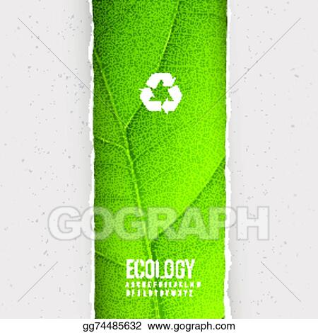 Vector Illustration Green Leaf Texture Under Torn Paper