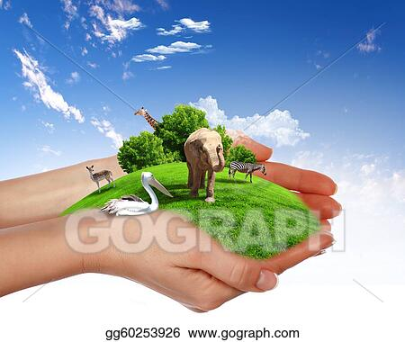 Drawing Green World And Wildlife Protected Clipart Drawing
