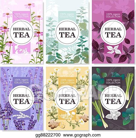 Clip Art Vector Herbal Tea Colored Banners Set Stock Eps Gg88222700 Gograph