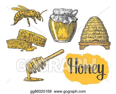 Jars Of Honey Bee Hive Clover Honeycomb Vector Vintage Engraved Illustration