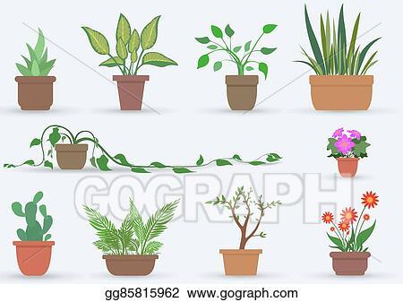 Watercolor House Plants Clipart   Pre-Designed Photoshop Graphics ~  Creative Market