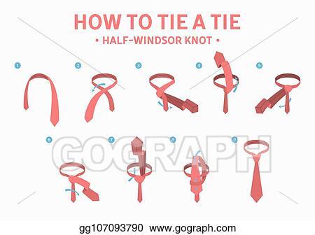 Remarkable Vector Stock How To Tie A Half Windsor Knot Tie Instruction Stock Wiring 101 Ziduromitwellnesstrialsorg