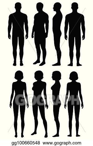 vector stock human body anatomy front back side view stock clip art gg100660548 gograph https www gograph com clipart license summary gg100660548