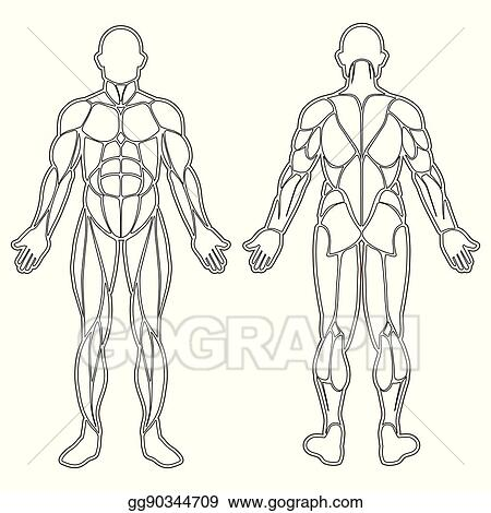 20+ Human Body Vector Art