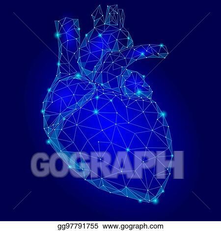 Vector Illustration - Human heart internal organ triangle