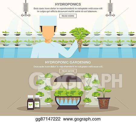 EPS Illustration - Hydroponic design illustration  Vector Clipart