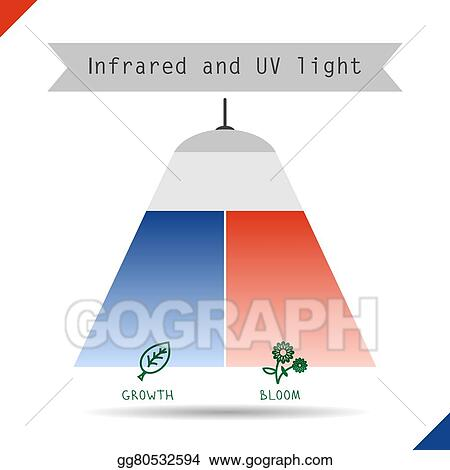 Vector Clipart Icon Infrared And Uv Light Vector Illustration
