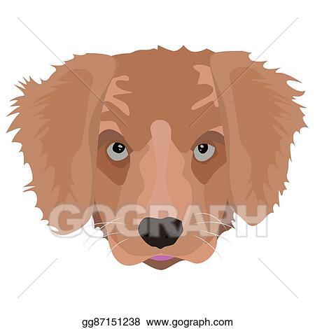 Vector Stock Illustration Golden Retriever Puppy Stock Clip Art
