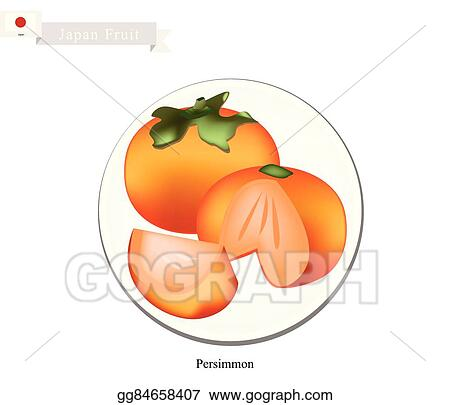 vector art kaki or japanese persimmon a popular fruit in japan eps clipart gg84658407 gograph gograph