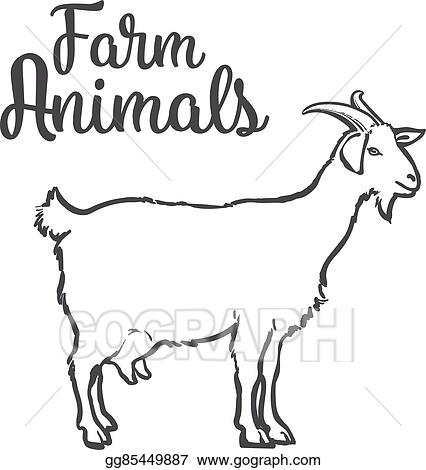 Vector Art - Ketch of a goat with horns and udder  Clipart
