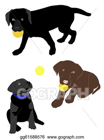 Vector Art Lab Puppies Playing Ball Clipart Drawing