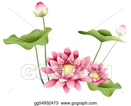 Drawing Lotus Flower And Leaves Clipart Drawing Gg54932473 Gograph