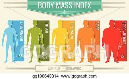 Man Body M Index Vector Fitness Bmi Chart With Male Silhouettes And Scale