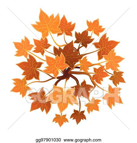 Vector Illustration - Orange plant or tree, top view  vector