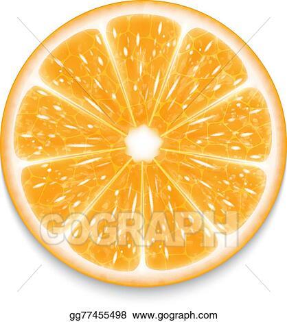EPS Vector - Orange slice  Stock Clipart Illustration