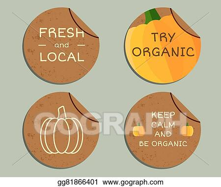 Pumpkin Diagram With Labels Reinvent Your Wiring Diagram