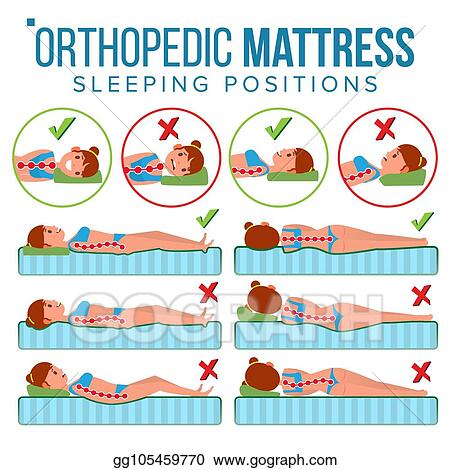Vector Illustration Orthopedic Mattress Vector Curvature Of Human Spine Sleeping Position Spine Support Health Body Pillow Comfortable Bed Various Mattresses Correct Spine Isolated Flat Illustration Stock Clip Art Gg105459770 Gograph