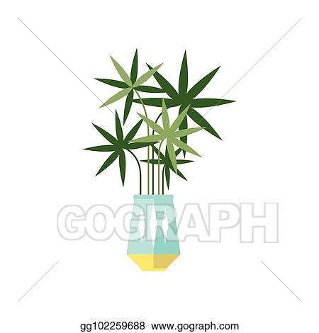 Vector Illustration Palm Tree House Plant Indoor Flower In Pot
