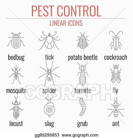 Eps illustration pest control icon set with names of insects eps illustration pest control line icon set with insects and their names perfect for exterminator service and pest control companies vector clipart ccuart Images