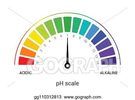 Ph Scale Indicator Chart Diagram Acidic Alkaline Measure Ysis Vector Chemical Value Test
