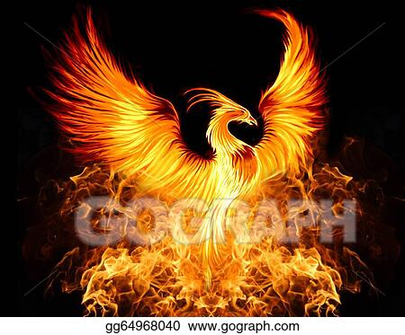 drawing phoenix clipart drawing gg64968040 gograph