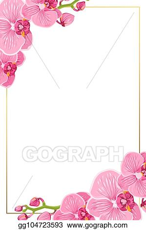 clip art vector pink orchid flowers border frame template card