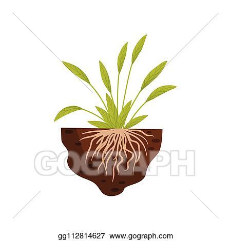 Thin Grass Clip Art