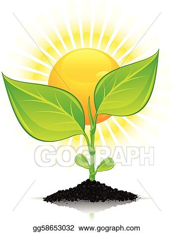 Clip Art Vector Plant With Drops And Sun Stock Eps Gg58653032