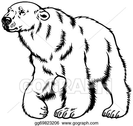 Black And White Bear Clip Art Royalty Free Gograph