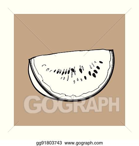 Vector Stock Quarter Slice Of Ripe Watermelon With Black Seeds Sketch Illustration Clipart Illustration Gg91803743 Gograph