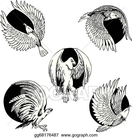 EPS Illustration - Round designs with eagles and falcons. Vector ...