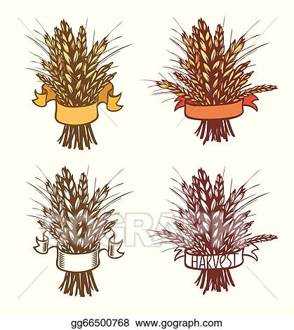 494 Sheaf Of Wheat Illustrations, Royalty-Free Vector Graphics & Clip Art -  iStock