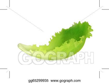 Clip Art Vectoriel Salade Verte Vecteur Dessin Clip Art