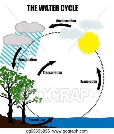 Vector clipart schematic representation of the water cycle in schematic representation of the water cycle in nature ccuart Gallery