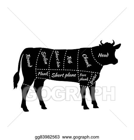 Eps Illustration Scheme Of Beef Cuts For Steak And Roast Vector