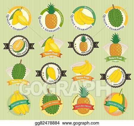 Vector Art - Set of various fresh fruit and vegetable