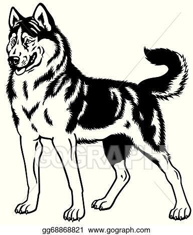 Vector Stock Siberian Husky Black White Clipart Illustration Gg68868821 Gograph