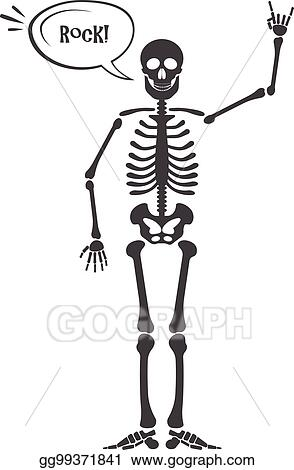 Vector Illustration Skeleton Human Anatomy Vector Halloween Black