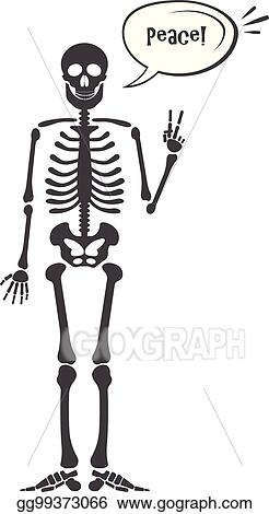 vector illustration skeleton human anatomy vector halloween black skeleton isolated on white skeleton hand sign ok finger up finger down fist middle finger rock n roll horns clapping palms and other https www gograph com clipart license summary gg99373066